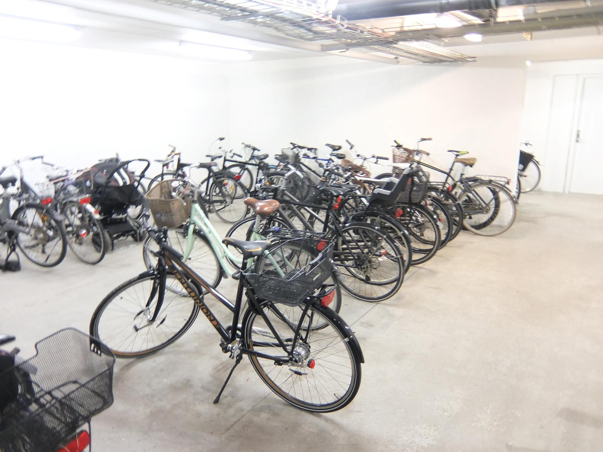 Boligudlejning på Blegkilde Alle i Aalborg - Cykelskur